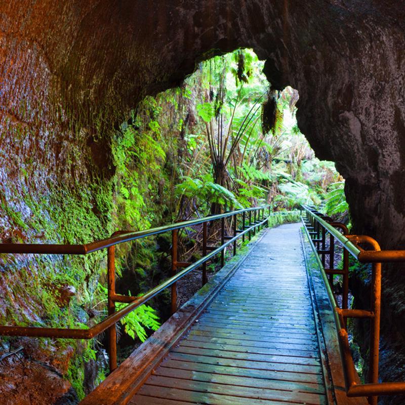 Fern Grotto Tour Nawiliwili Hawaii