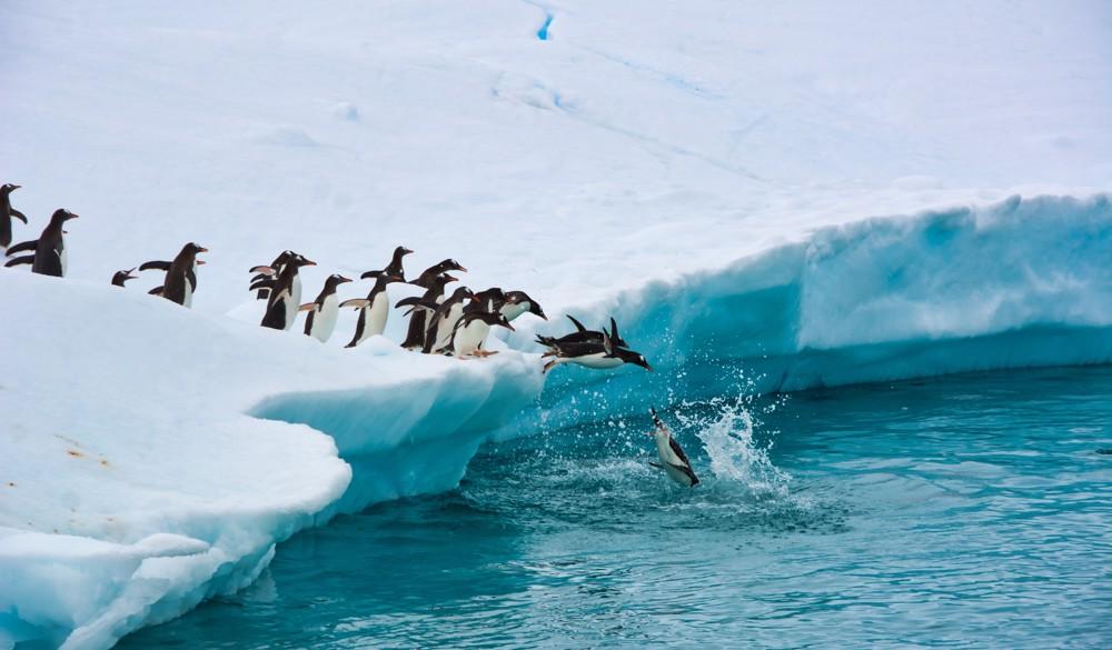 Antarctica - Overnight onboard