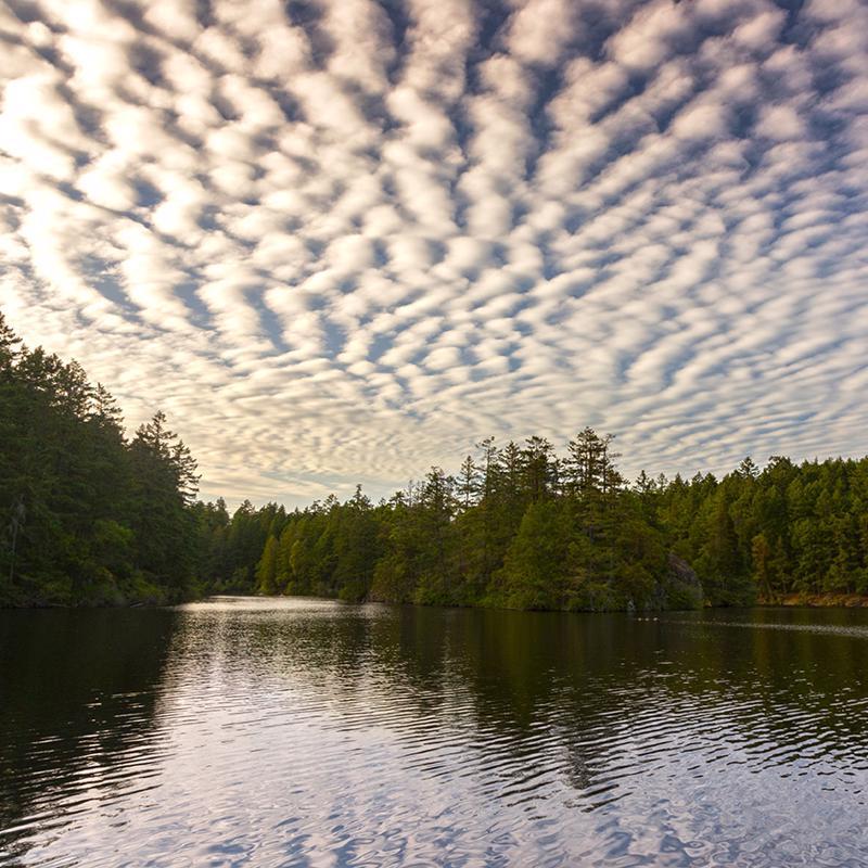 Thetis Lake Regional Park Victoria British Columbia Canada