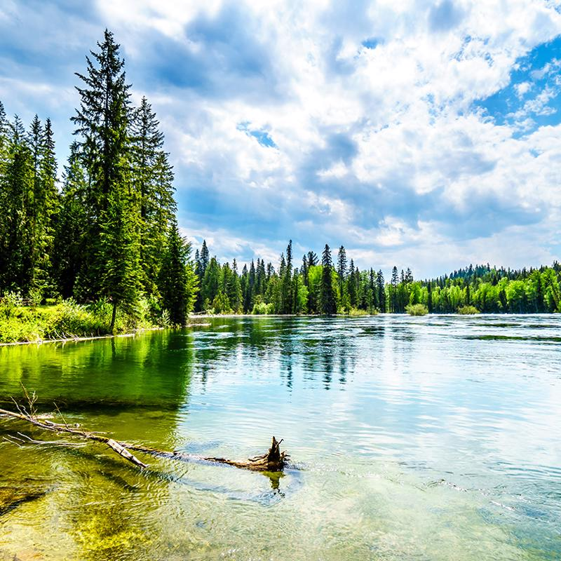 Clearwater to Jasper National Park