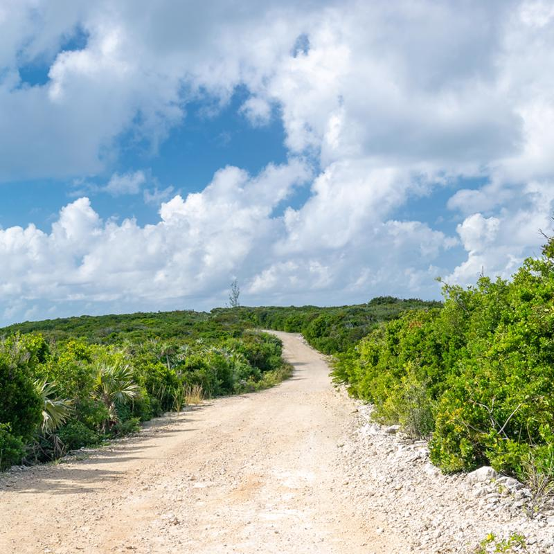 Cococay Nature Walk