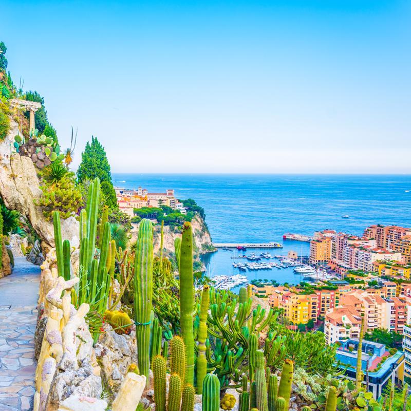 Jardin Exotique Monte Carlo Monaco