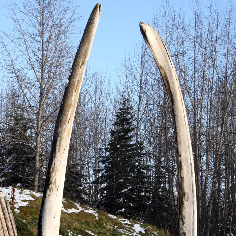 Alaska Native Heritage Center Anchorage Alaska