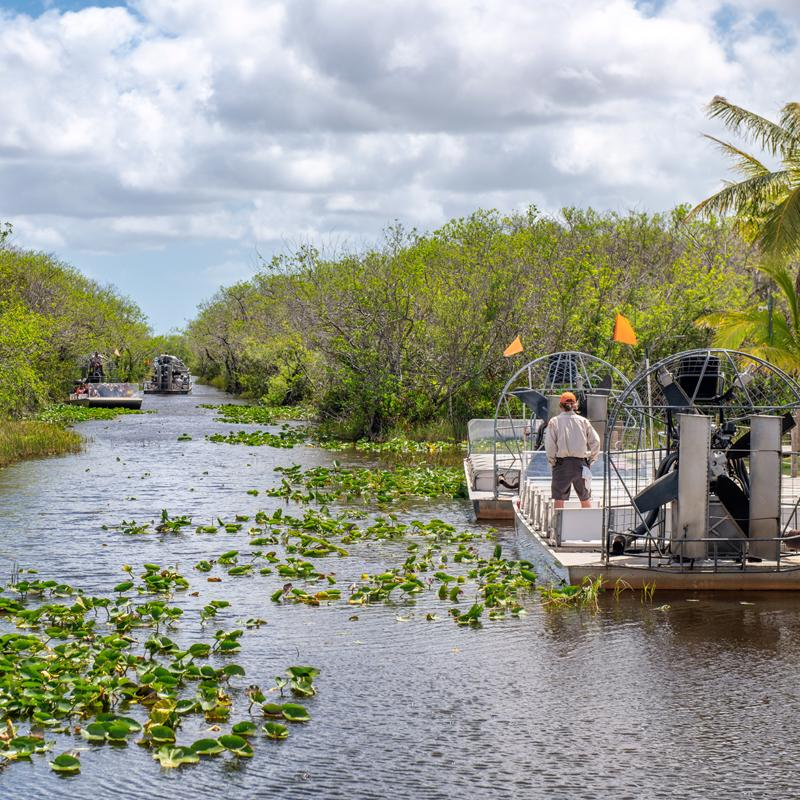 Everglades National Park Miami USA