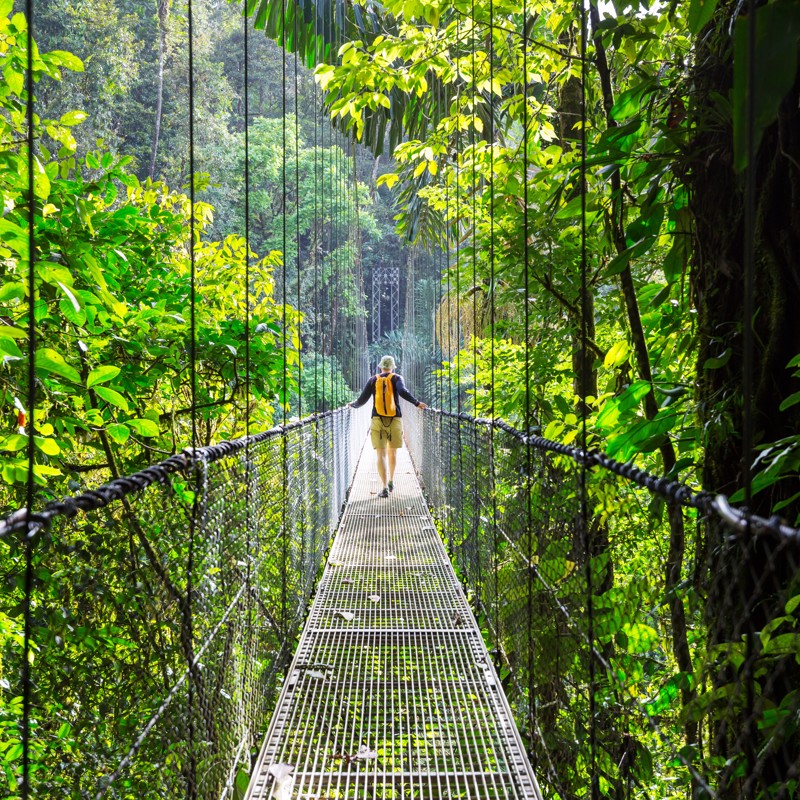 Rain forest sky walk in Costa Rica