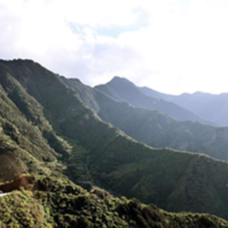 Rural de Anaga Park Santa Cruz Tenerife Spain
